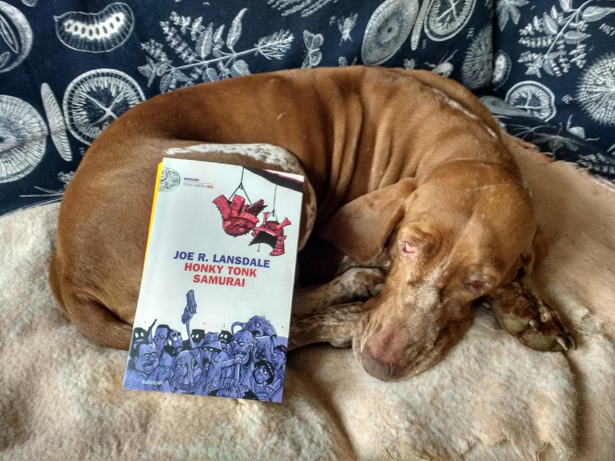 Lansdale, Zerocalcare e i cani. Bel libro. No. Forse...